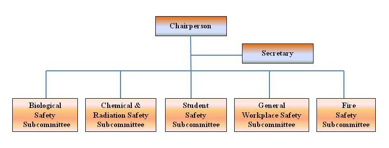 Organisation of the Duke-NUS Safety Committee